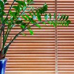 1 inch wooden blinds are the perfect addition to any home or office.