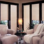 Specialty Drapery in Richmond Virginia offers Single Cell translucent cellular shades for homes windows and glass doors.